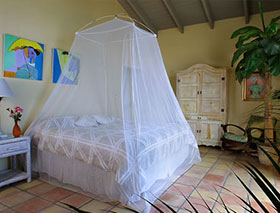 Mosquito net over bed